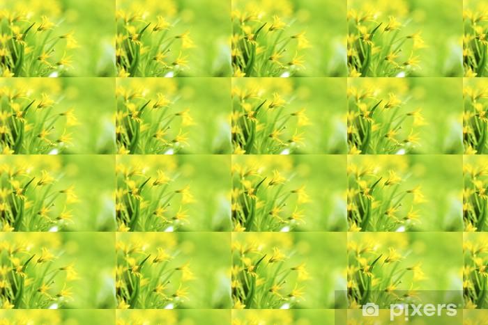 Papier peint vinyle sur mesure Yellow spring flowers - Fleurs