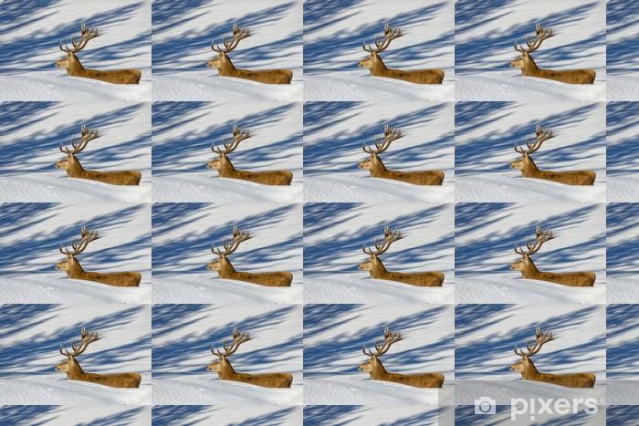 Vinylová tapeta na míru Deer na sněhu pozadí - Témata