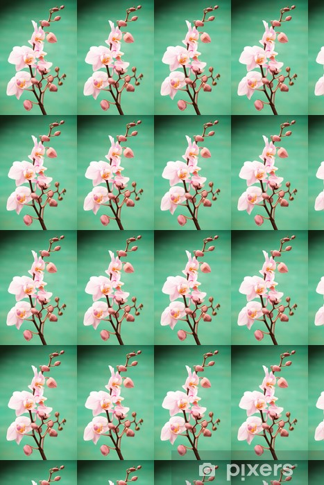 Tapeta na wymiar winylowa Orchidea - Tematy