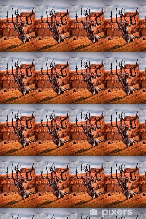 Vinylová tapeta na míru Mrtvý Tree, Bryce Canyon - Amerika