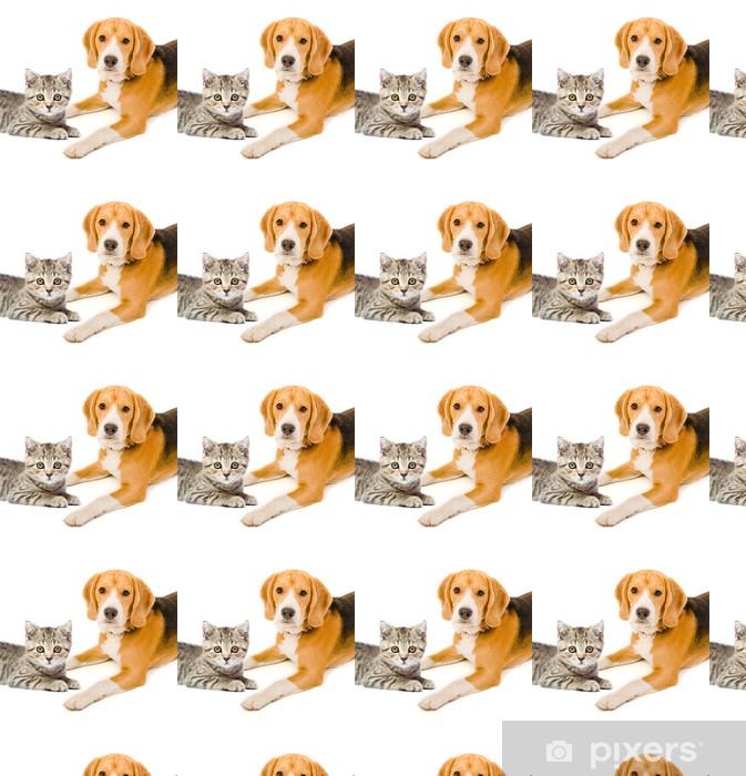 Tapeta na wymiar winylowa Kotek szkocki proste i pies rasy beagle - Ssaki