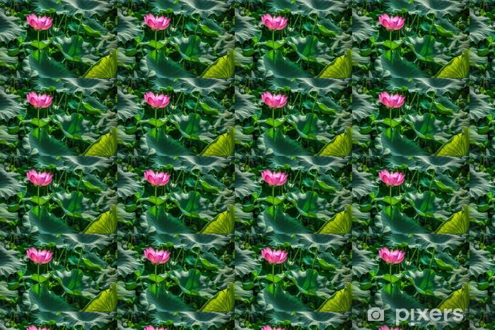 Papier peint vinyle sur mesure Nelumbo nucifera fleur est une plante à fleurs - Fleurs