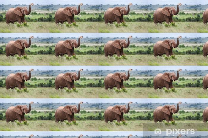 African Elephant Vinyl custom-made wallpaper - Themes