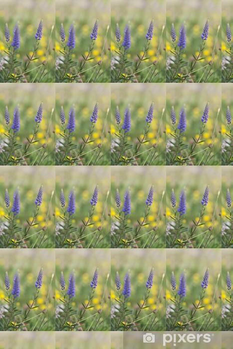 Papier peint vinyle sur mesure Véronique Pointu, Veronica spicata, Scrophulariaceae - Fleurs
