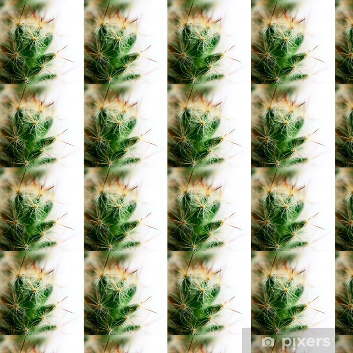 Tapeta na wymiar winylowa Małe mamillaria kaktus kolce makro strzelać duży - Rośliny