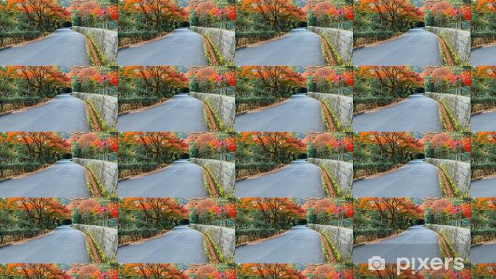 Papel pintado estándar a medida El camino en Maukama Park en Kyoto - Asia
