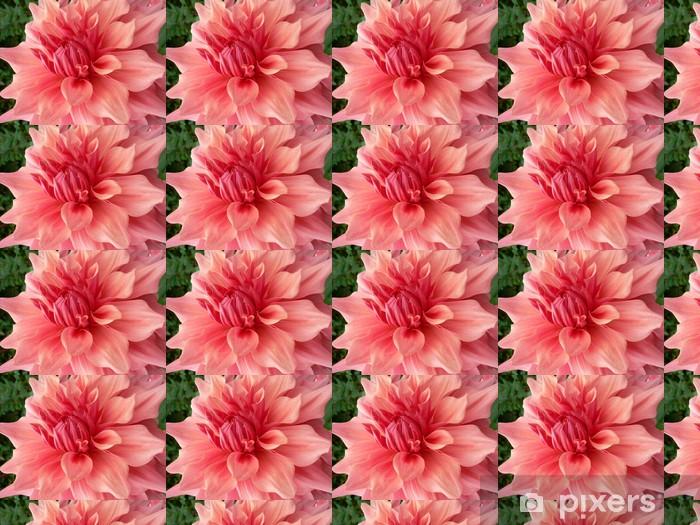 Papier peint vinyle sur mesure Dahlie / Georgine - Fleurs