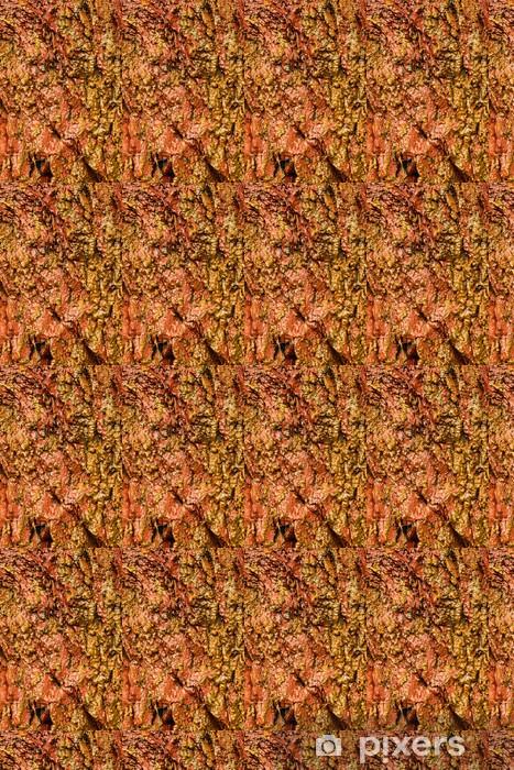 Papier peint vinyle sur mesure Contexte d'orange pierre humide roche texture de mur extérieur - Textures