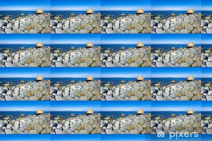 Papier peint vinyle sur mesure Côte rocheuse suédois dans la saison d'avril - Europe