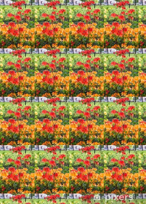 Vinyltapete nach Maß Angehende Japanische Azalee im Frühjahr - Jahreszeiten