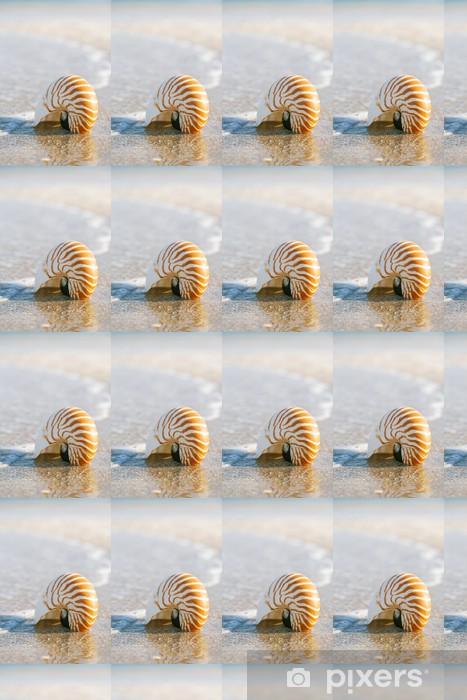 Tapeta na wymiar winylowa Nautilus powłoki na białym piasku na plaży na Florydzie w świetle słonecznym - Wakacje