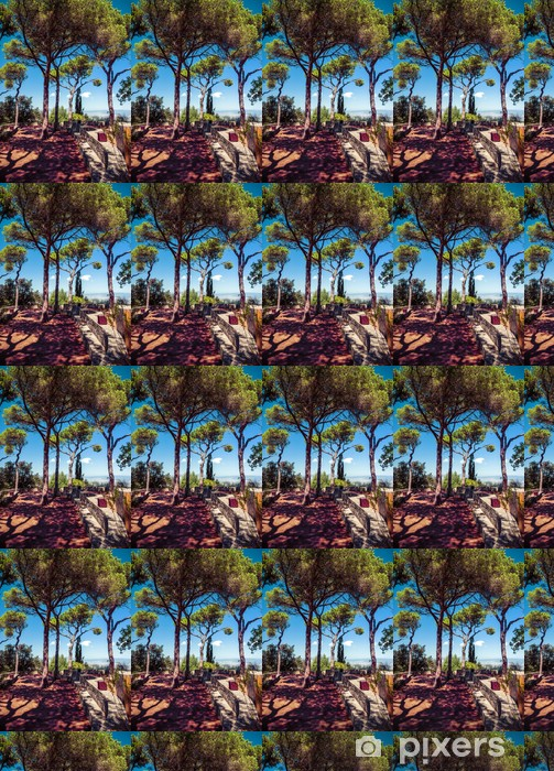 Tapeta na wymiar winylowa Iglaki na błękitne niebo - Dom i ogród