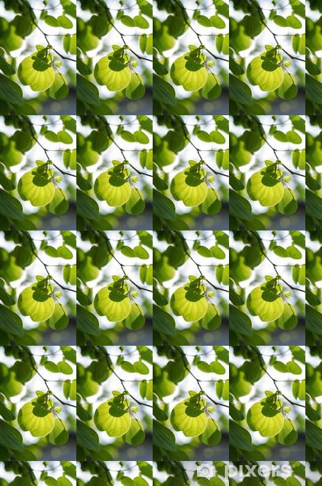 Vinylová tapeta na míru Zelené listy a slunce - Jiné pocity