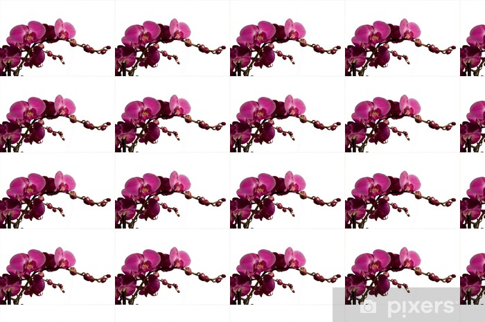 Papier peint vinyle sur mesure Orchidée -