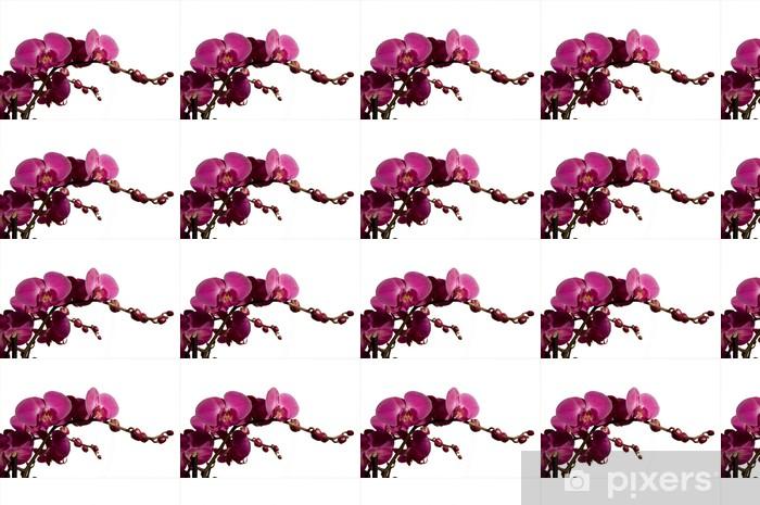 Vinyltapete nach Maß Orchidee -