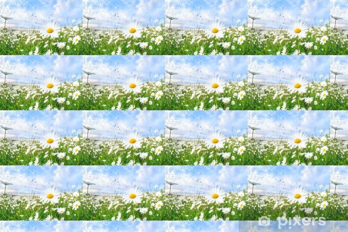 Vinyltapete nach Maß Kamille Blume über blauen Himmel - Blumen