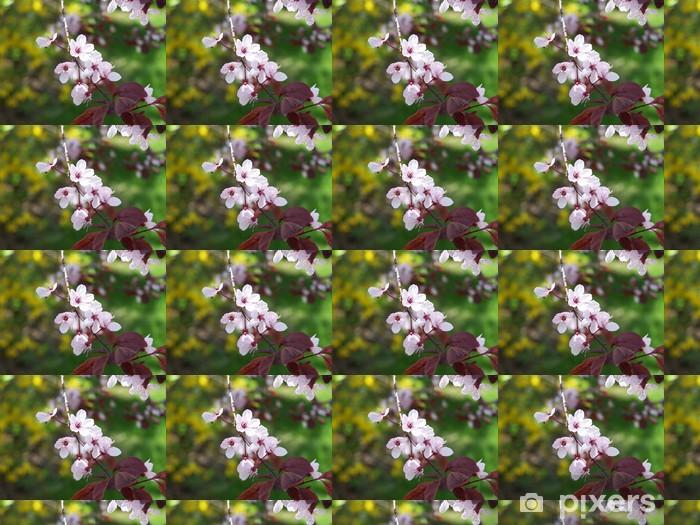 Tapeta na wymiar winylowa Drzewo kwiat śliwy - Drzewa