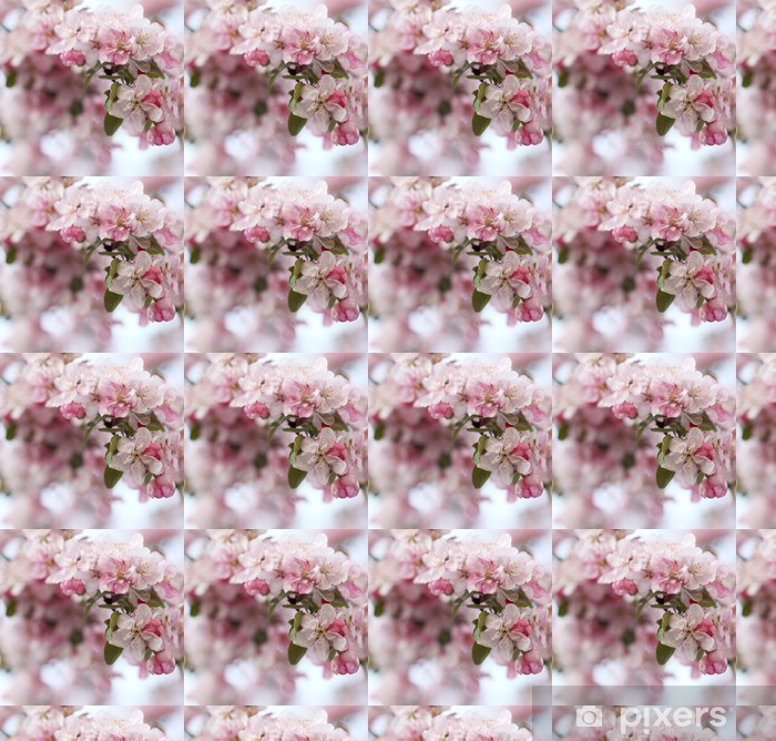 Pinkki apple tree flowers Räätälöity vinyylitapetti - Kukat