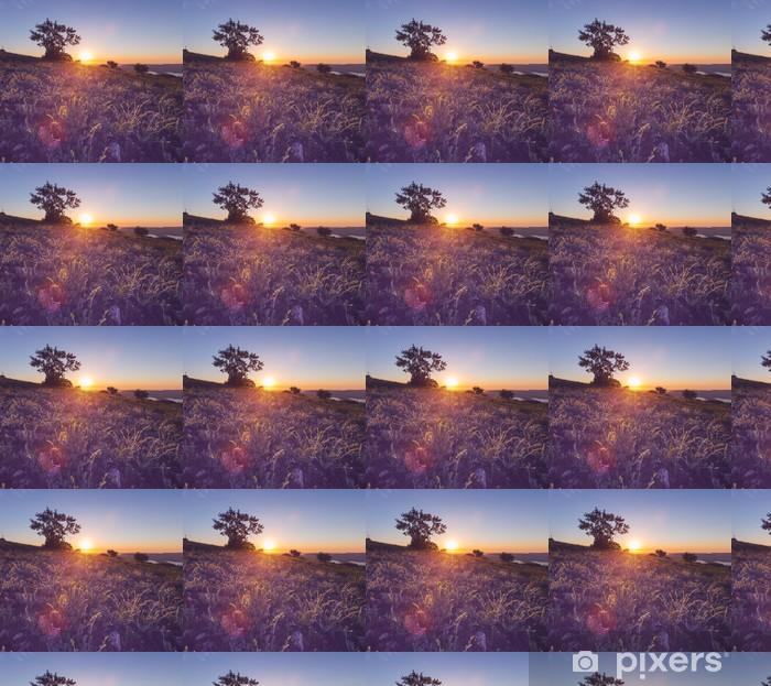 Papier peint vinyle sur mesure Meadow au coucher du soleil - Agriculture
