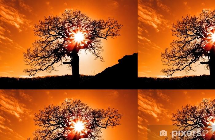 Vinylová Tapeta Sám strom se sluncem a barev červená oranžová žlutá nebe - Témata