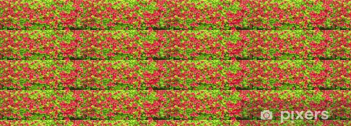 Tapeta na wymiar winylowa Azalia różowy - Kwiaty