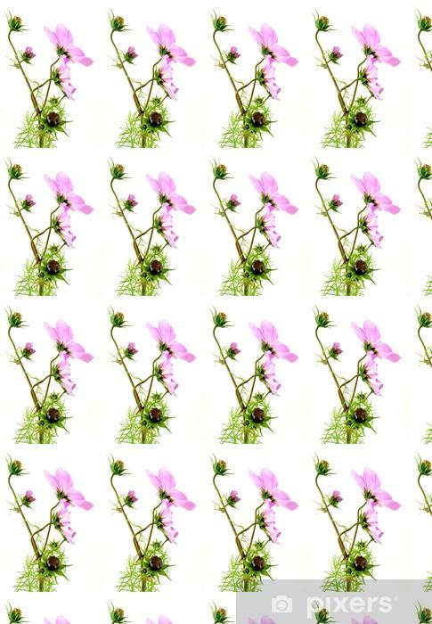 Vinylová tapeta na míru Cosmea - Rostliny