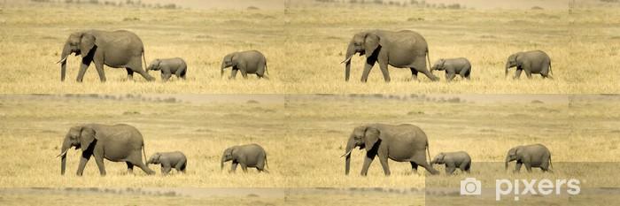 African Elephant Masai Mara Kenya Wallpaper Pixers We Live To
