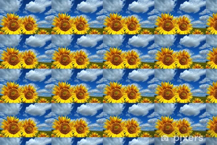 Tapeta na wymiar winylowa Słoneczniki, pola, niebo, chmury - Kwiaty