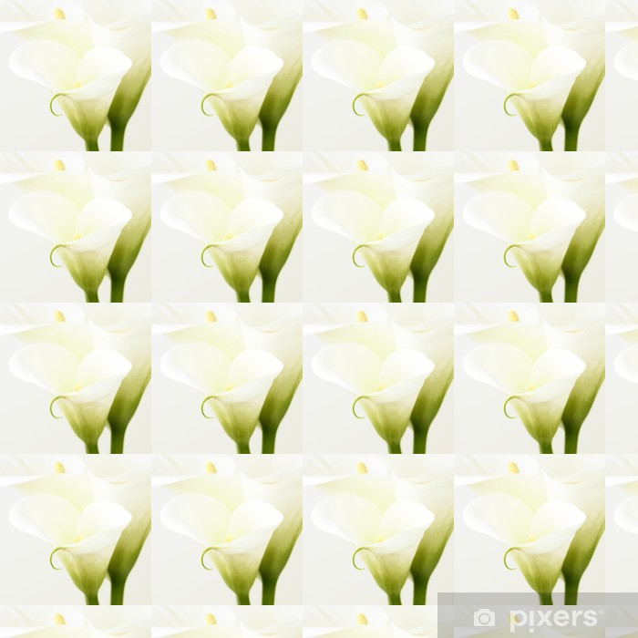 Calla lilies Vinyl custom-made wallpaper - Flowers