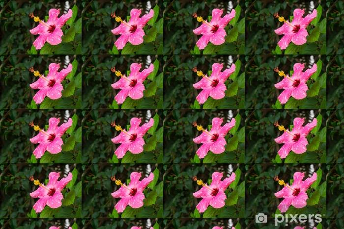 Vinylová tapeta na míru Růžový květ Hibiscus - Květiny