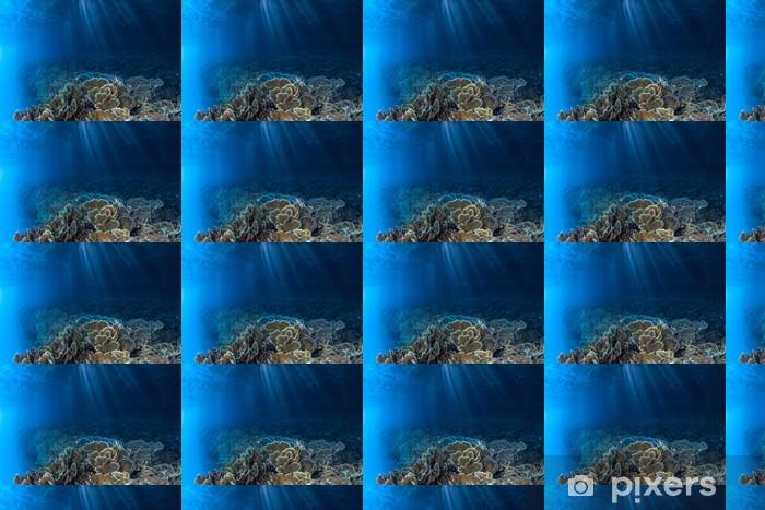 Papier peint vinyle sur mesure Coral Reef and Light - Sous l'eau