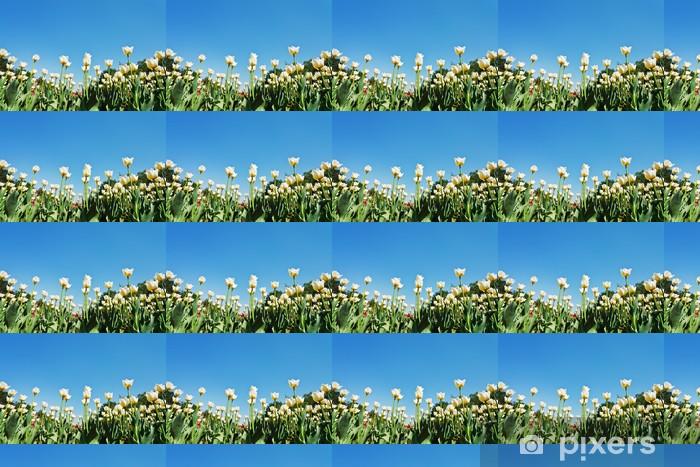 Papier peint vinyle sur mesure Tulipes ornementales sur plantation de fleurs sur fond de ciel bleu - Saisons