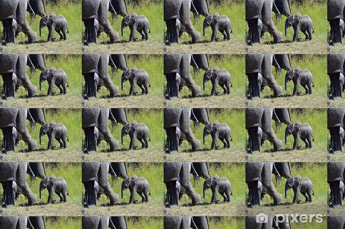 Papier peint vinyle sur mesure Les éléphants d'Afrique - Thèmes
