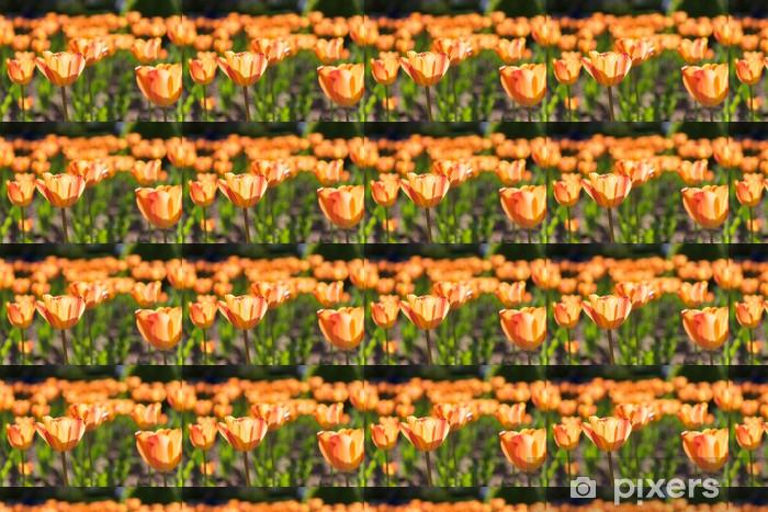 Papier peint vinyle sur mesure Champ de tulipes - Maisons et jardins