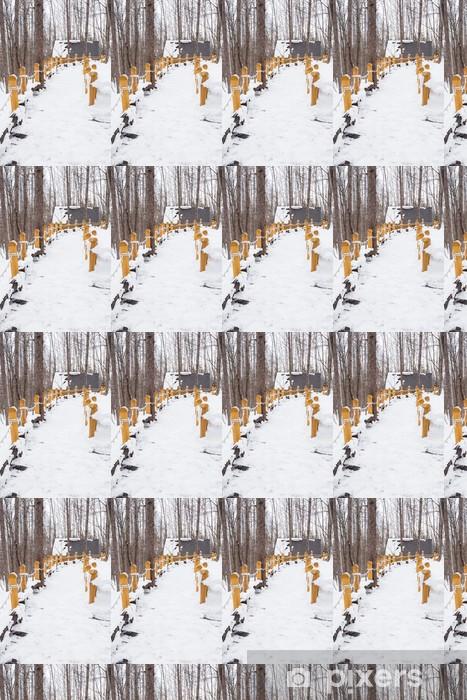 Tapeta na wymiar winylowa Zimowa scena: śnieżna ścieżka przez ośnieżone drzewa - Lasy