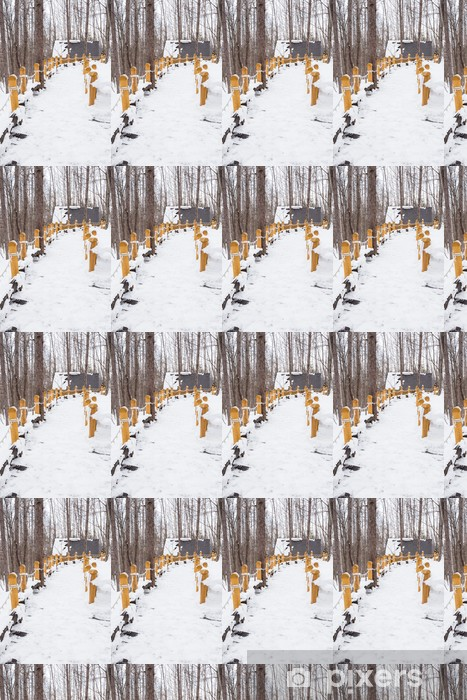 Winter scene: snowy path through snow-covered trees Vinyl Custom-made Wallpaper - Forests