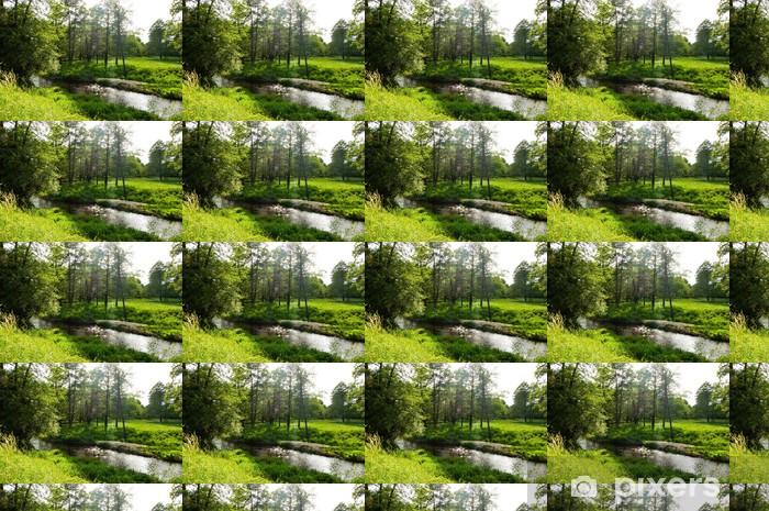Papel pintado estándar a medida El río en un bosque de la luz hermosa - Deportes de exterior