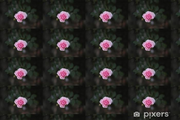 Vinyl behang, op maat gemaakt Roze roos - Bloemen