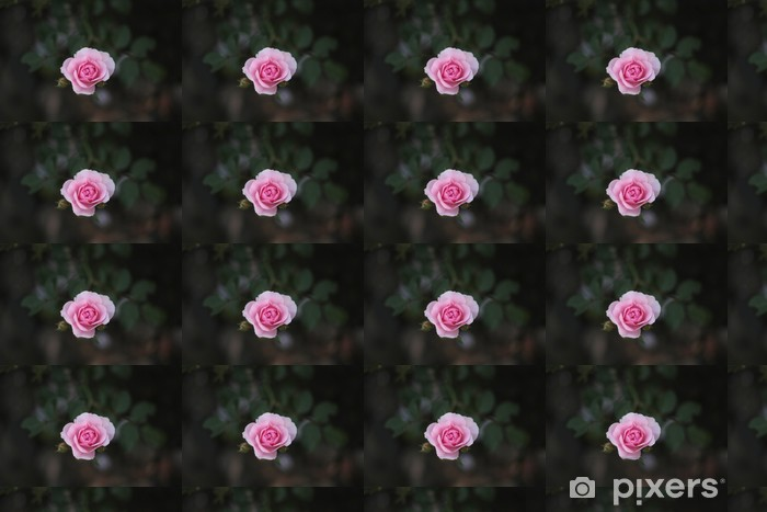 pink rose Vinyl custom-made wallpaper - Flowers