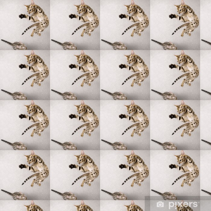 Jumping cat Vinyl custom-made wallpaper - Themes