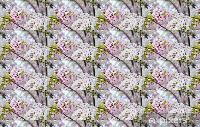 Papier peint vinyle sur mesure Floraison de fleurs de cerisier Arbre à Nashville Tennessee - Arbres