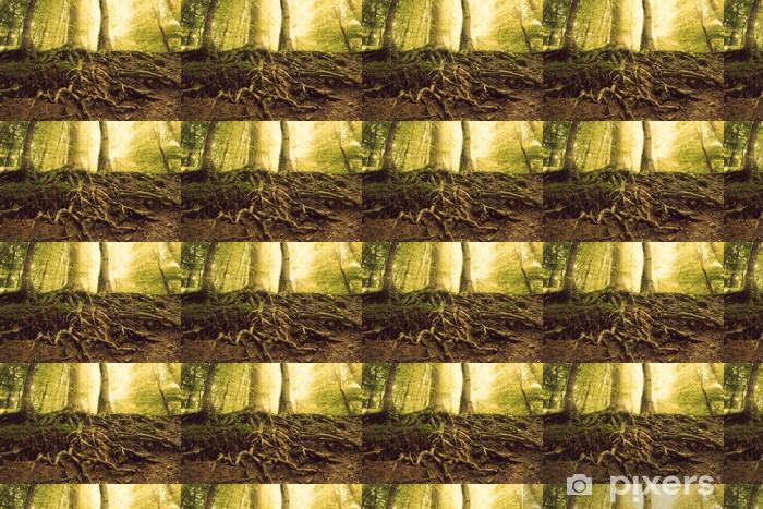 Papier peint vinyle sur mesure Roots - Forêt