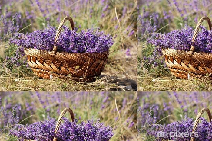 Vinyltapete Lila Bereich der Lavendelblüten - Land