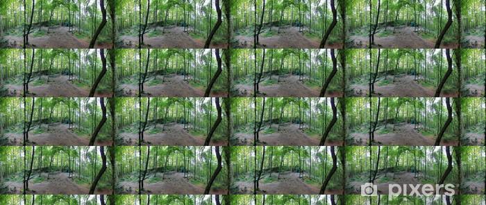 Vinylová tapeta na míru Lesní panorama s volně rostoucích stromů a zúčtování - Lesy