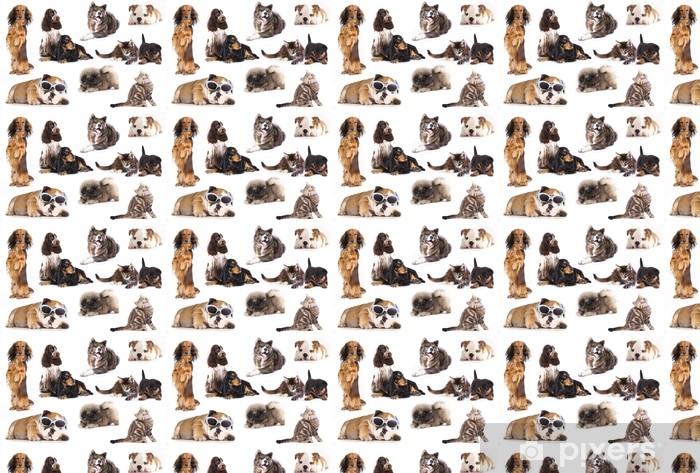 Vinylová tapeta na míru Skupina psy a kočky, nastavte - Savci
