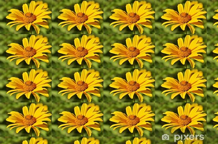 Tapeta na wymiar winylowa Żółty kwiat - Kwiaty