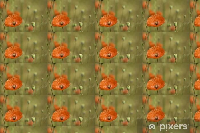 Tapeta na wymiar winylowa Czerwony mak Dziki użytki zielone - Kwiaty