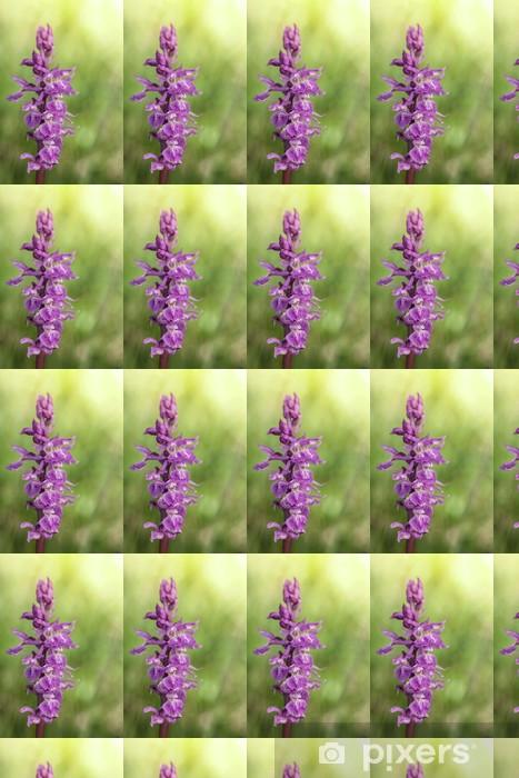 Vinyl behang, op maat gemaakt Wilde orchidee: mannetjesorchis - Bloemen