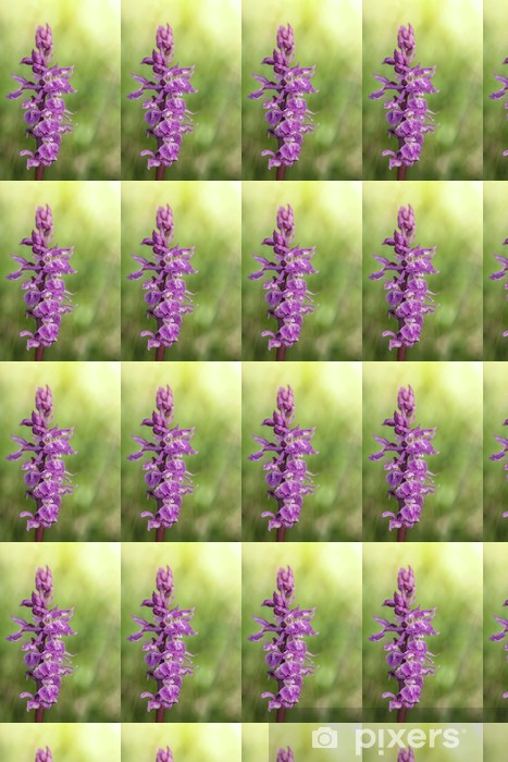 Wild orchid: Orchis Mascula Vinyl custom-made wallpaper - Flowers