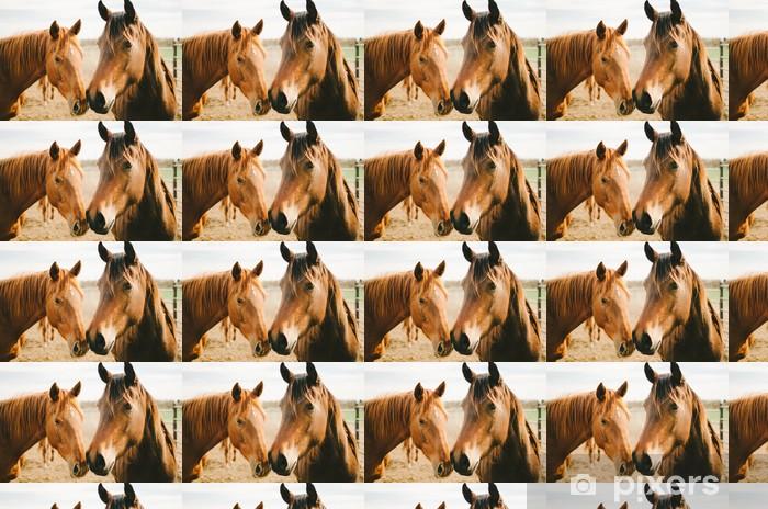 Papel pintado estándar a medida Dos caballos de la castaña - Temas